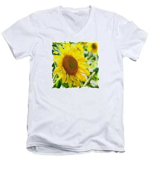 Men's V-Neck T-Shirt featuring the photograph Morning Glory Farm Sun Flower by Vinnie Oakes