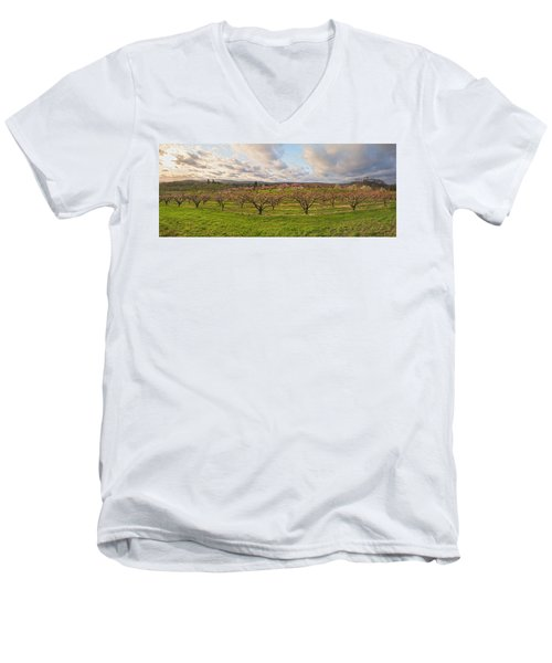 Morning Glory Orchards Men's V-Neck T-Shirt by Angelo Marcialis