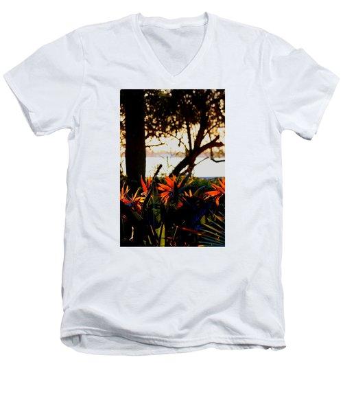 Morning In Florida Men's V-Neck T-Shirt by Diane Merkle
