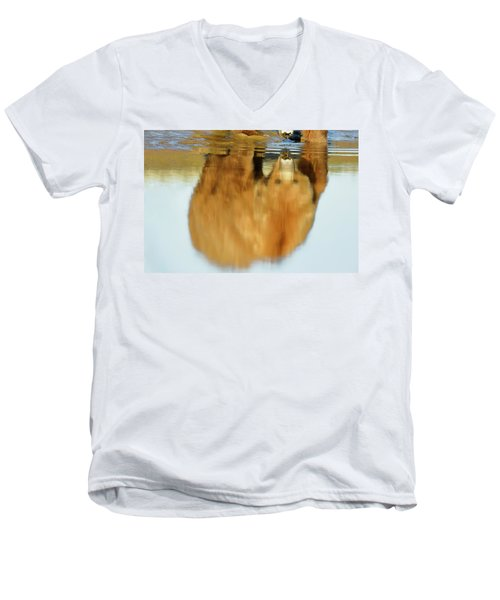 Mother Grizzly Reflection Men's V-Neck T-Shirt