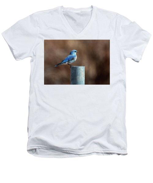Mountain Bluebird Men's V-Neck T-Shirt by Eric Nielsen