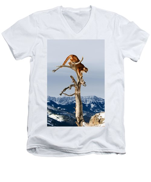 Mountain Lion In Tree Men's V-Neck T-Shirt
