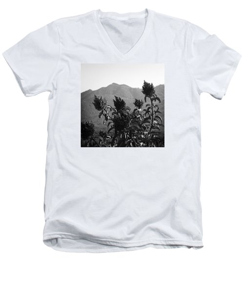 Mountains And Vegetation Men's V-Neck T-Shirt