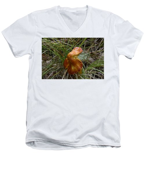 Men's V-Neck T-Shirt featuring the photograph Mushroom In Grass by Paul Freidlund