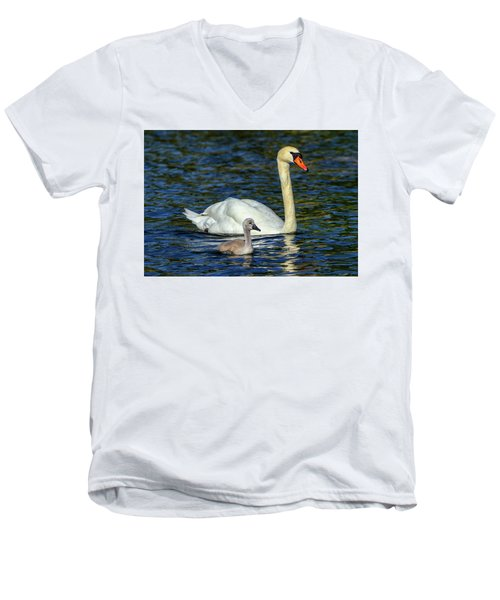 Mute Swan, Cygnus Olor, Mother And Baby Men's V-Neck T-Shirt by Elenarts - Elena Duvernay photo
