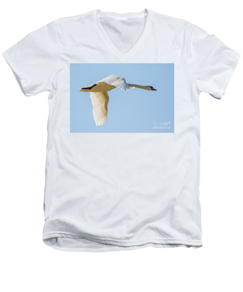 Mute Swan Men's V-Neck T-Shirt
