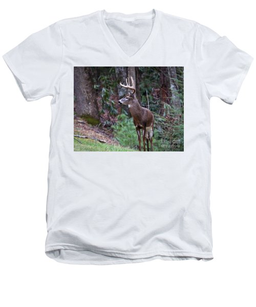 Men's V-Neck T-Shirt featuring the photograph My Best Side by Douglas Stucky