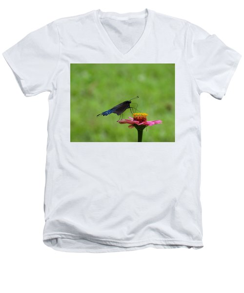 My Butterfly Men's V-Neck T-Shirt