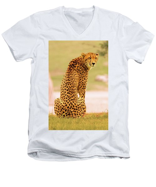 My Cheetah Men's V-Neck T-Shirt