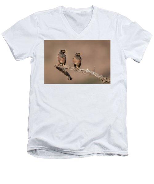 Myna Pair Men's V-Neck T-Shirt