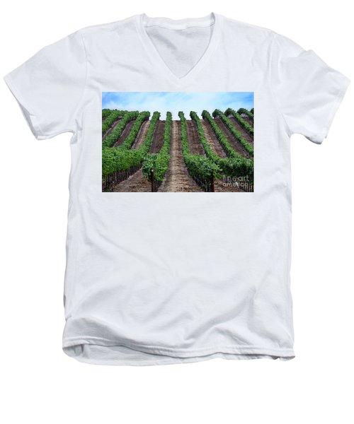 Napa Vineyards Men's V-Neck T-Shirt