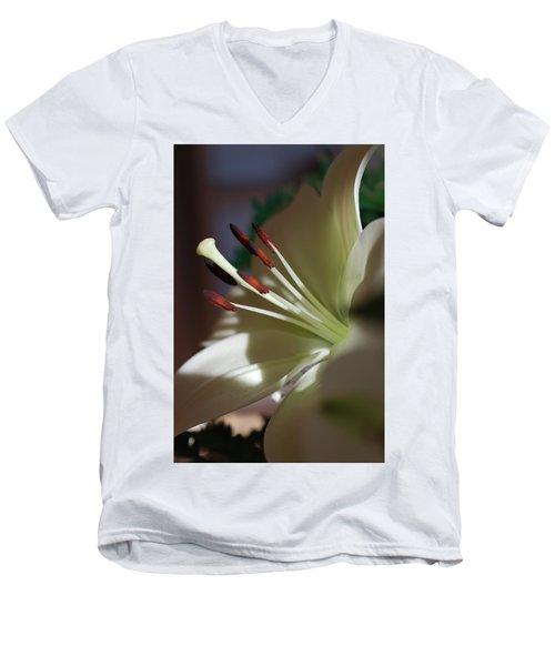 Naturally Elegant Men's V-Neck T-Shirt