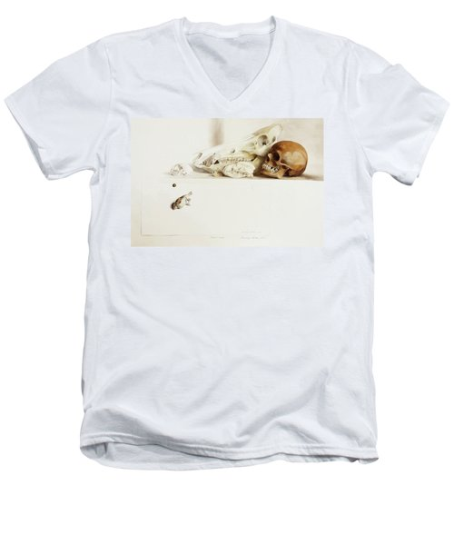 Nature Morte Men's V-Neck T-Shirt