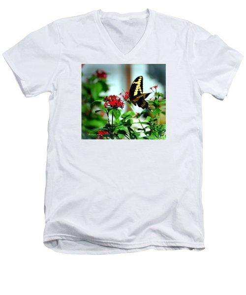 Nature's Beauty Men's V-Neck T-Shirt by Edgar Torres