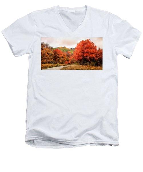Nature's Palette Men's V-Neck T-Shirt