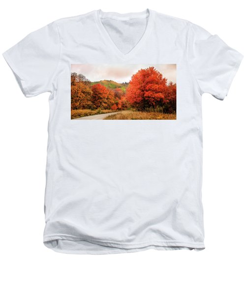 Nature's Palette Men's V-Neck T-Shirt