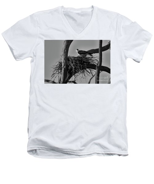 Men's V-Neck T-Shirt featuring the photograph Nesting V2 by Douglas Barnard