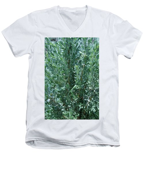 New Sage Men's V-Neck T-Shirt