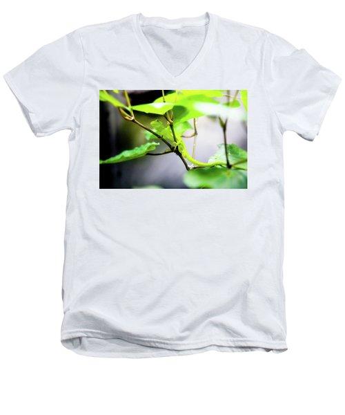 New Zealand Lizard Men's V-Neck T-Shirt