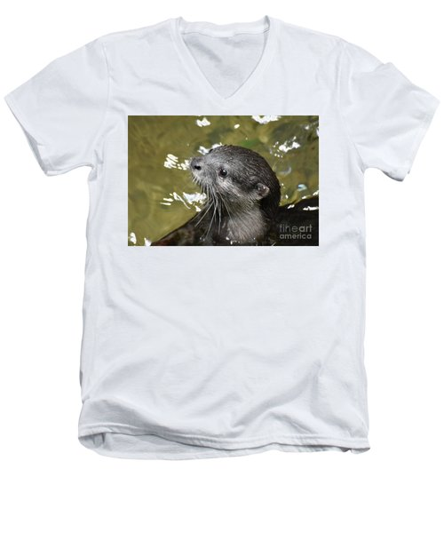 North American River Otter Swimming In A River Men's V-Neck T-Shirt