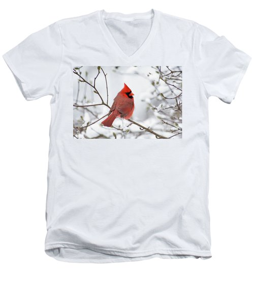 Northern Cardinal - D001540 Men's V-Neck T-Shirt