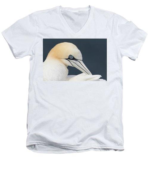 Northern Gannet At Troup Head - Scotland Men's V-Neck T-Shirt