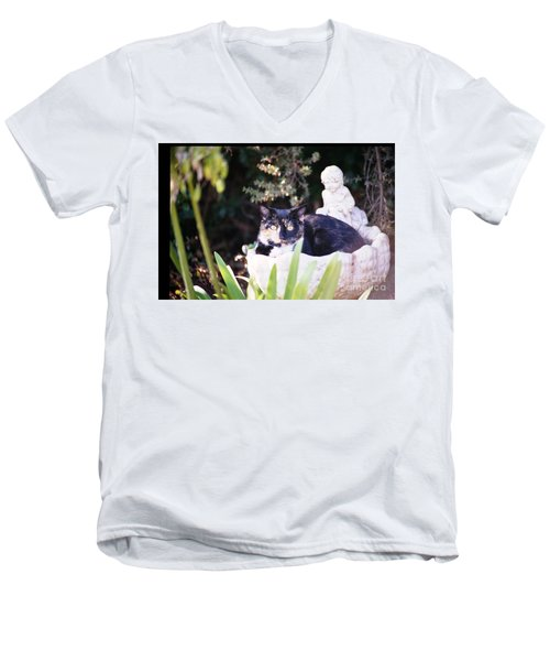 Not Just For The Birds Men's V-Neck T-Shirt