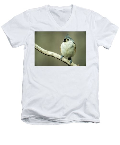 Titmouse Thinking About Weighty Matters Men's V-Neck T-Shirt