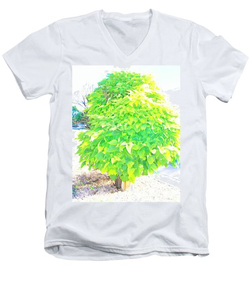 Men's V-Neck T-Shirt featuring the photograph Obese American Tree by Lenore Senior