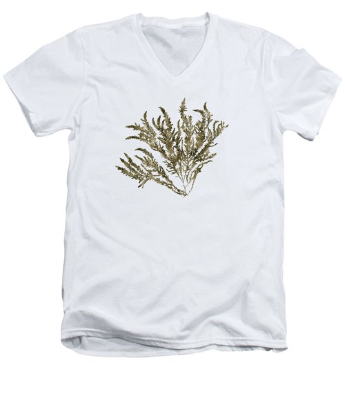 Men's V-Neck T-Shirt featuring the mixed media Ocean Seaweed Plant Art Ptilota Sericea Square by Christina Rollo