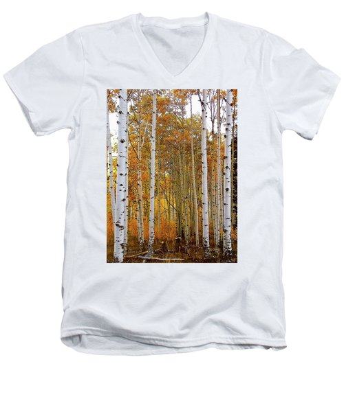 October Aspen Grove  Men's V-Neck T-Shirt