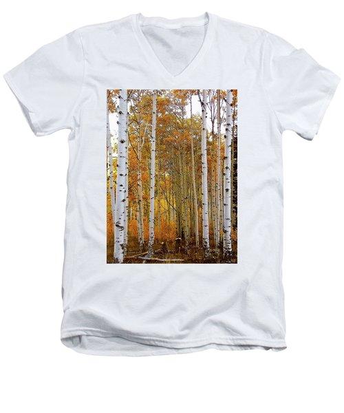 October Aspen Grove  Men's V-Neck T-Shirt