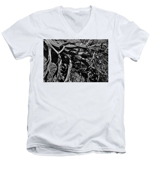 Old Sagebrush Men's V-Neck T-Shirt