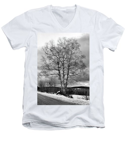 Old White Birch Men's V-Neck T-Shirt