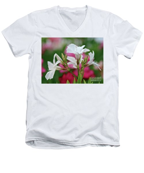 Oleander Casablanca 1 Men's V-Neck T-Shirt