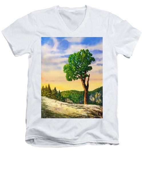 Olmsted Point Tree Men's V-Neck T-Shirt by Douglas Castleman