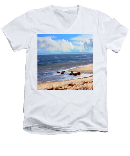 On A Clear Day Men's V-Neck T-Shirt by Judy Palkimas