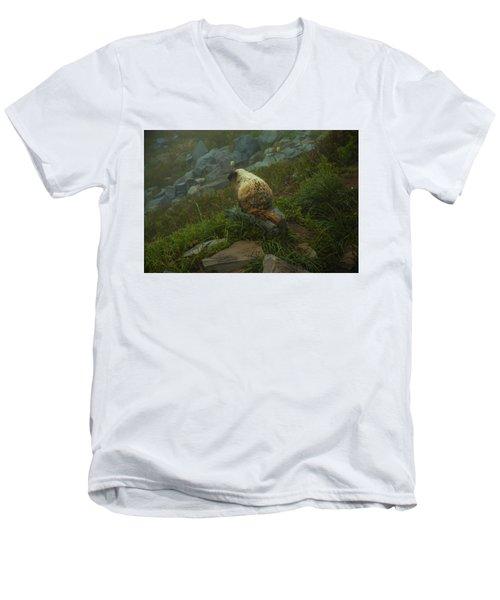 On Lookout Men's V-Neck T-Shirt