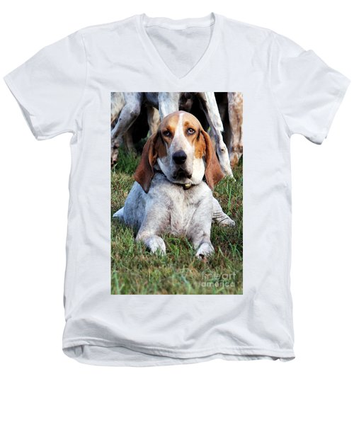 Men's V-Neck T-Shirt featuring the photograph One Tired Hound by Polly Peacock