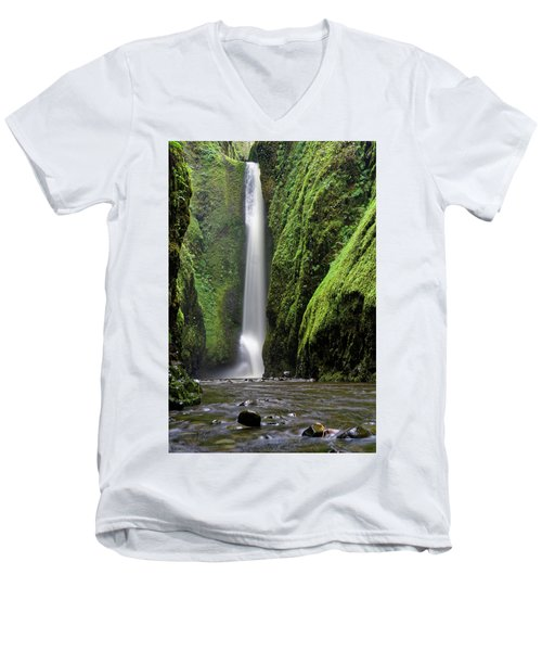 Oneonta Portrait Men's V-Neck T-Shirt