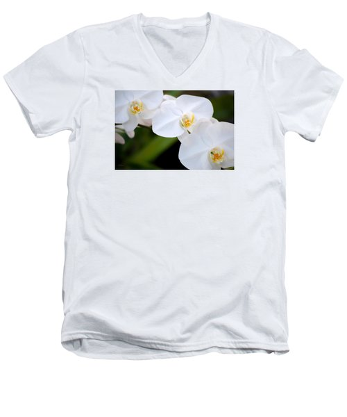 Orchid Flow Men's V-Neck T-Shirt by Deborah  Crew-Johnson