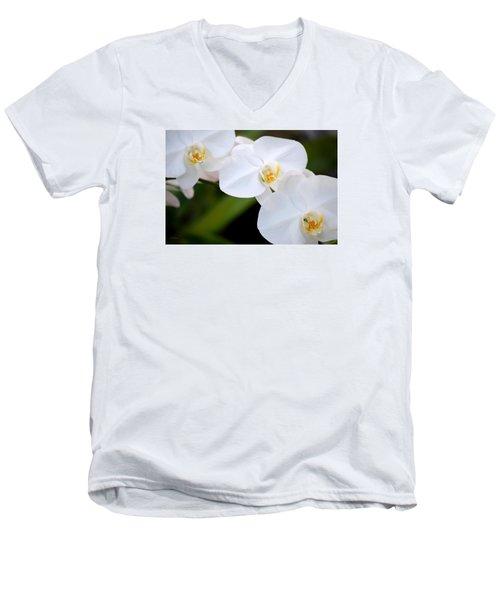 Orchid Flow Men's V-Neck T-Shirt