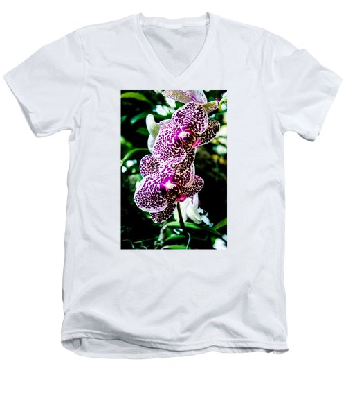 Orchid - Pla236 Men's V-Neck T-Shirt