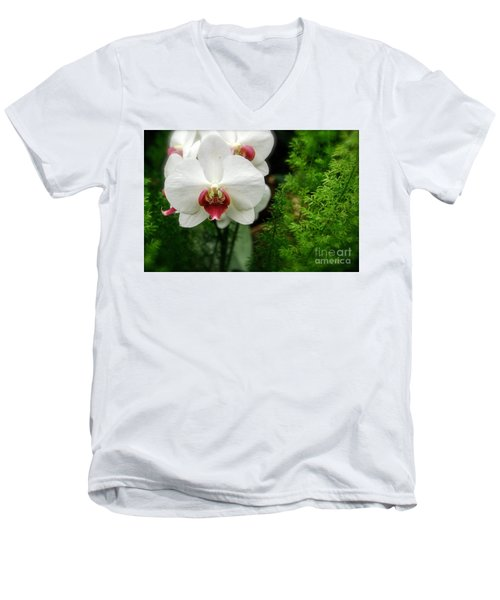 Men's V-Neck T-Shirt featuring the photograph Orchid White by Brian Jones