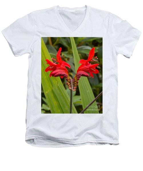 Oregon Flower 1 Men's V-Neck T-Shirt