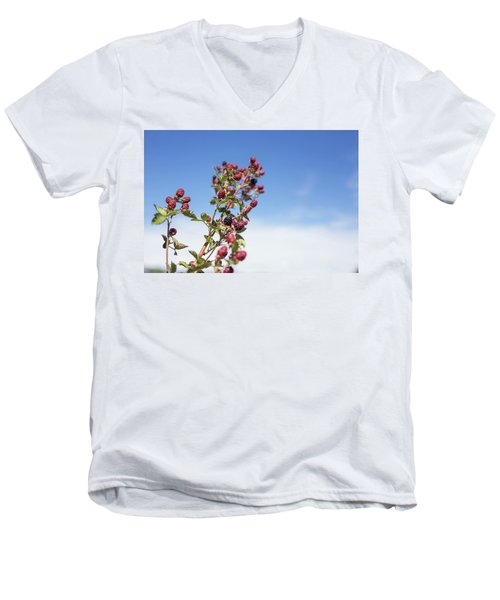 Men's V-Neck T-Shirt featuring the photograph Organic Handpicked Home Orchard Raspberries,blackberries From Bu by Jingjits Photography