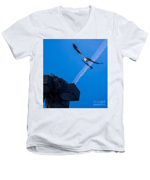 Osprey Carrying Stick To Nest Men's V-Neck T-Shirt