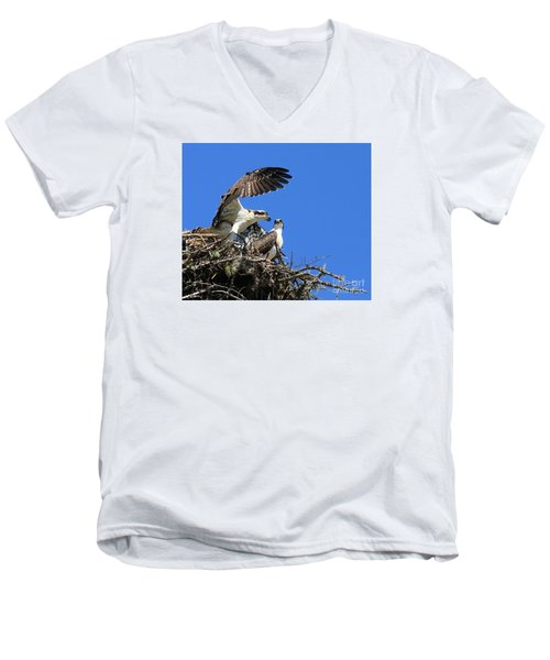 Men's V-Neck T-Shirt featuring the photograph Osprey Chicks Ready To Fledge by Debbie Stahre