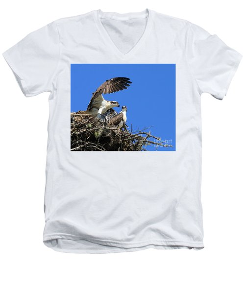 Osprey Chicks Ready To Fledge Men's V-Neck T-Shirt