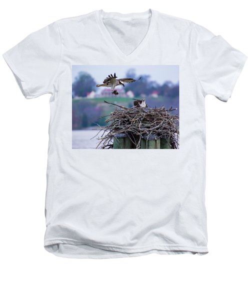 Osprey Nest Building Men's V-Neck T-Shirt